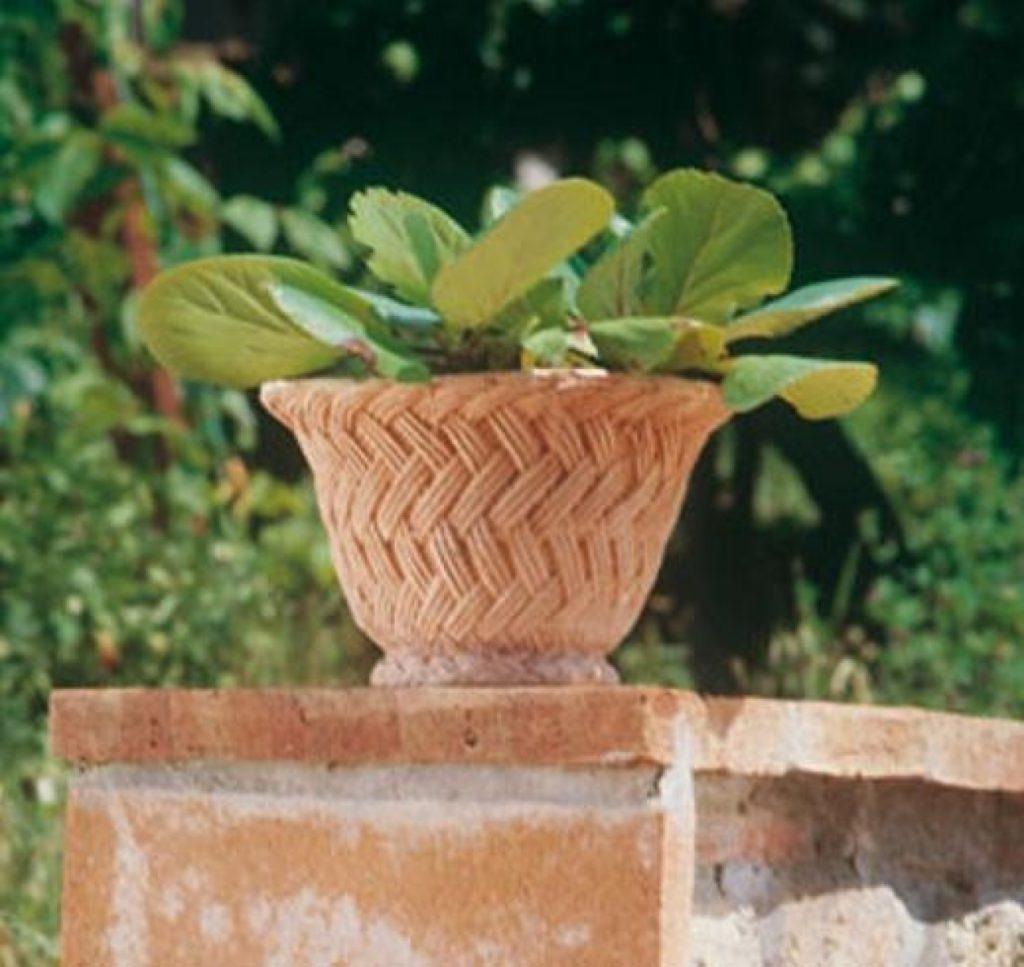 Terracotta Pflanztopf mit Zopfmuster auf Mauer