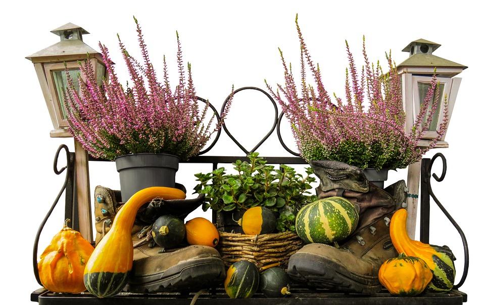 Herbstbepflanzung mit Terracotta
